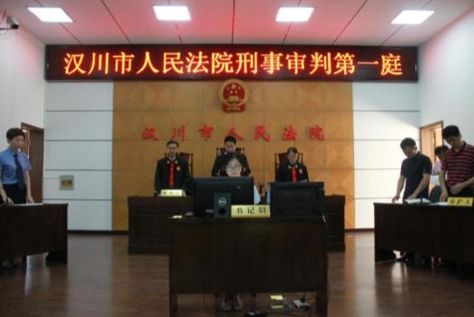 汉川法院公开宣判一起涉毒犯罪集团案